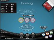 Play 3 Card Poker now!